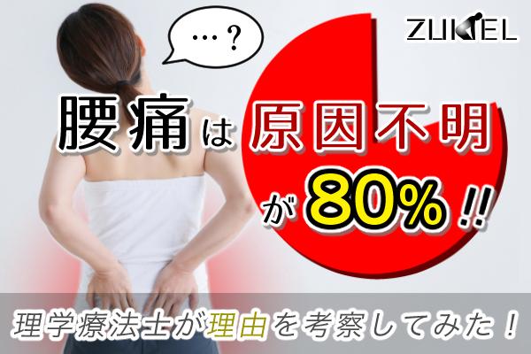 腰痛の80%は原因不明