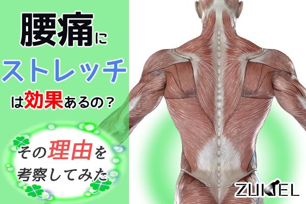 腰痛とストレッチの効果について