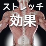 腰痛とストレッチの効果