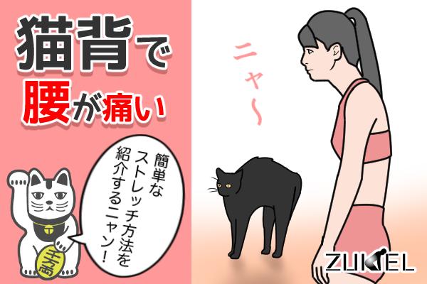 猫背で腰の痛い