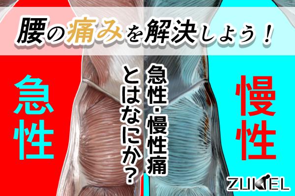 腰の痛みを解決