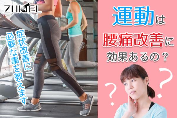 運動と腰痛改善んの効果