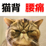 猫背と腰痛