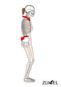 腰椎の姿勢