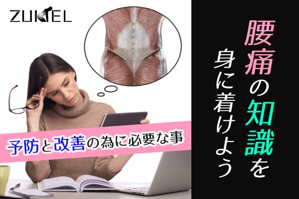 腰痛の知識について
