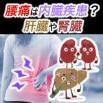 腰痛と腎臓、肝臓の悪さ